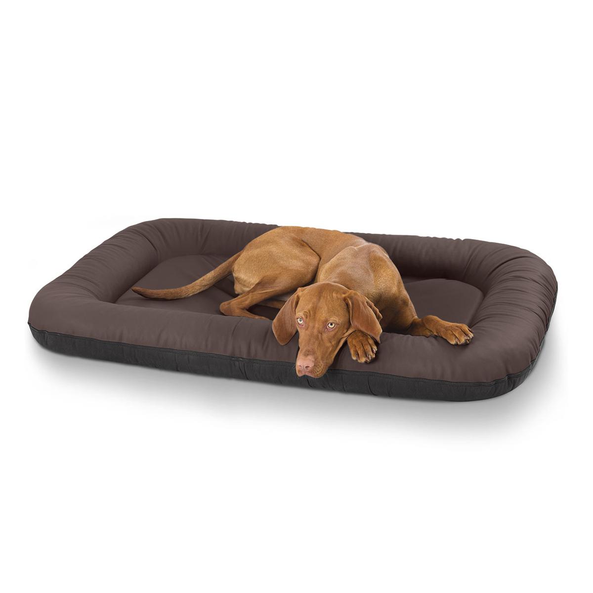 leder hundebett jerry braun eckig xxl. Black Bedroom Furniture Sets. Home Design Ideas