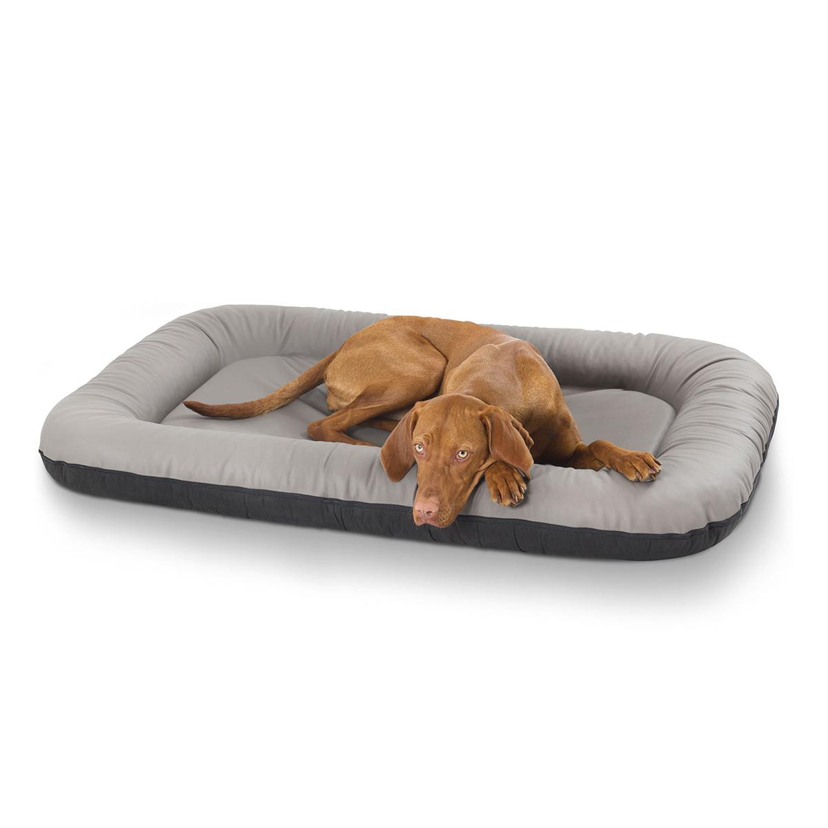 leder hundebett jerry grau eckig xxl. Black Bedroom Furniture Sets. Home Design Ideas